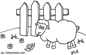 Ferme_mouton